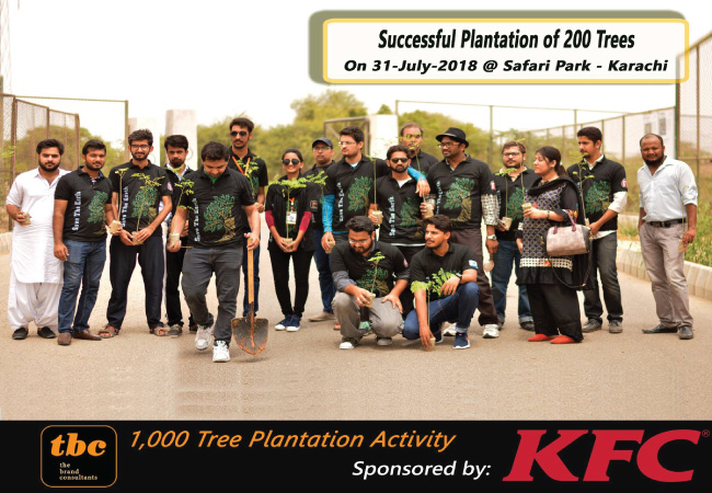 Day-3-200-Plantation---600 Completed