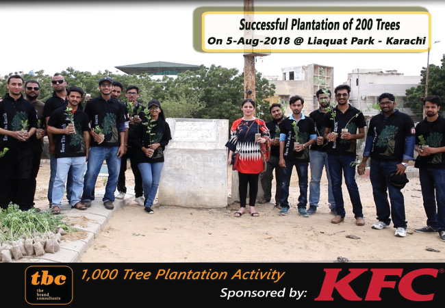 Day 4: 200 Plantation - 800 Completed