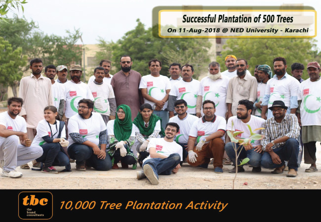 Day 6: 500 Plantation - 1,500 Completed