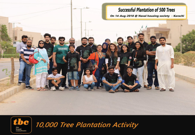 Day 7: 500 Plantation - 2,000 Completed